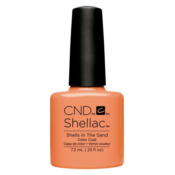 Shellac - Color Coat Shells in the Sand